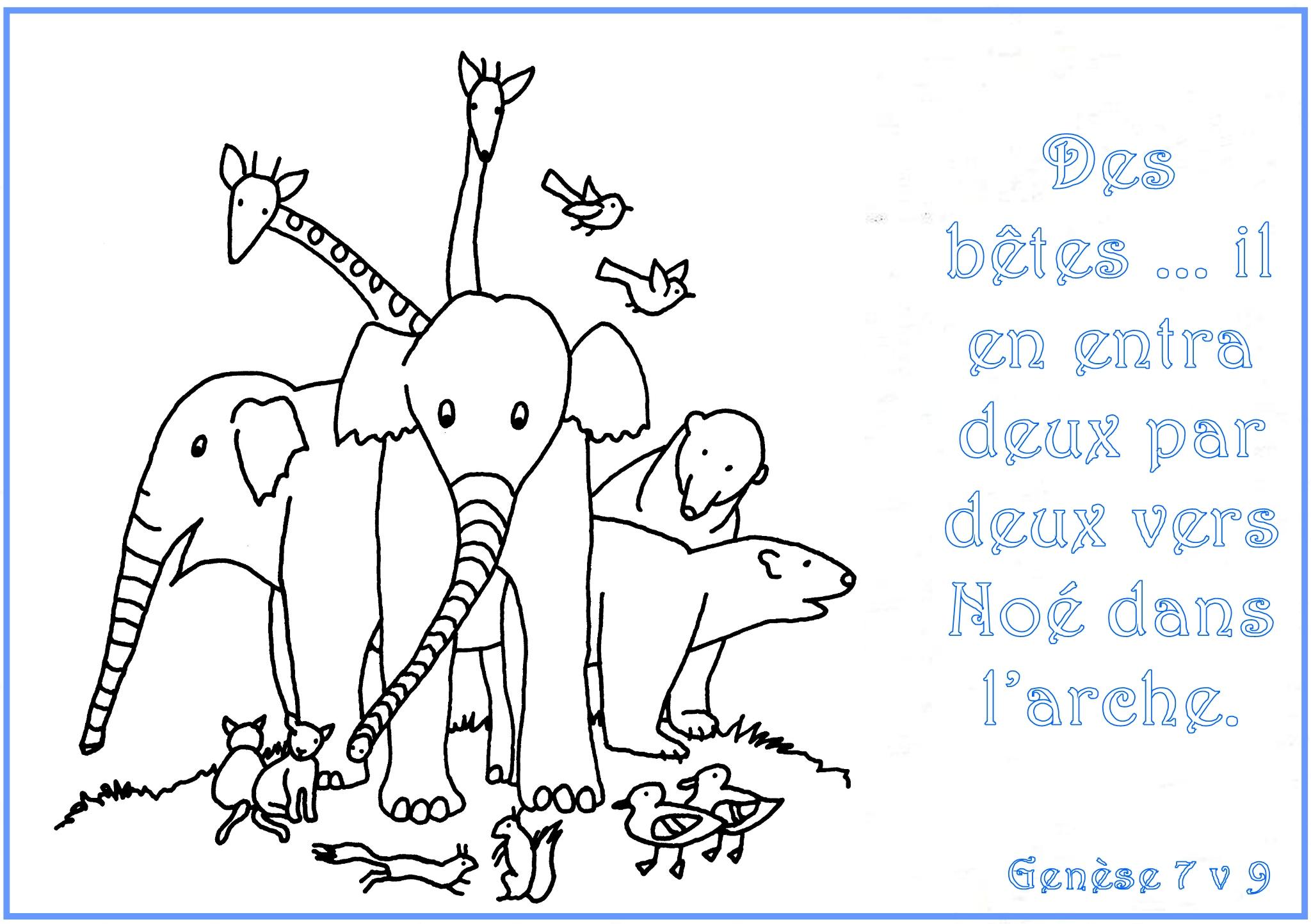 Histoires jeux et coloriages pour enfants - Dessin de tous les animaux ...