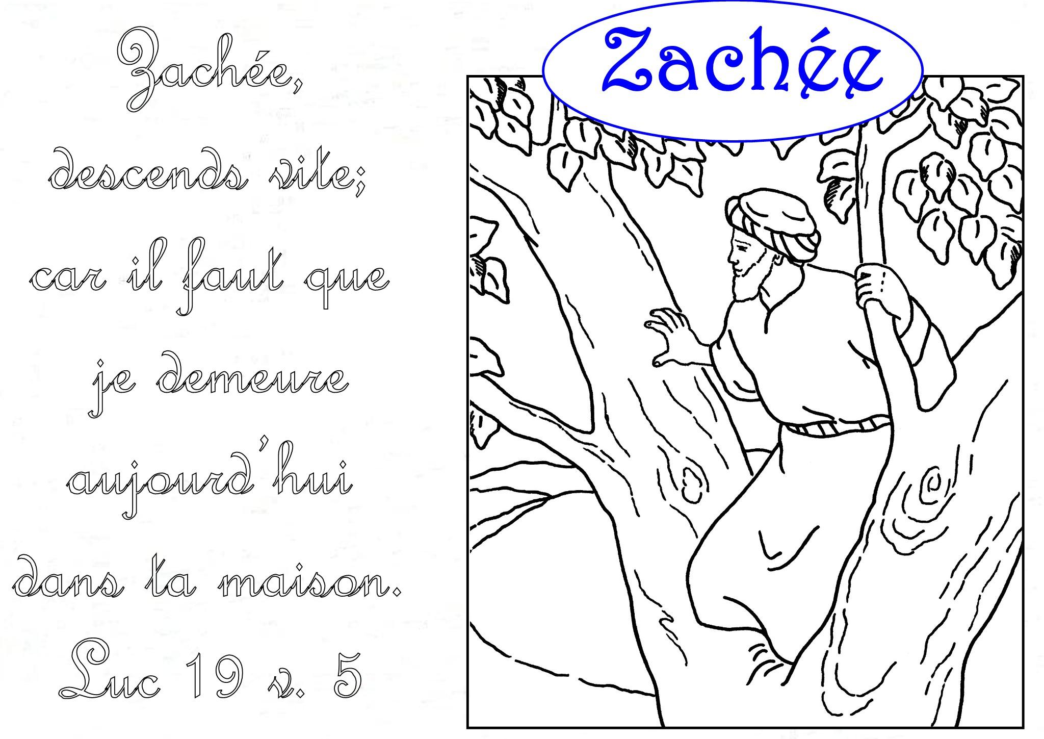 coloriage Zachée